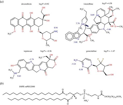Cationic amphiphilic drugs self-assemble to the core–shell