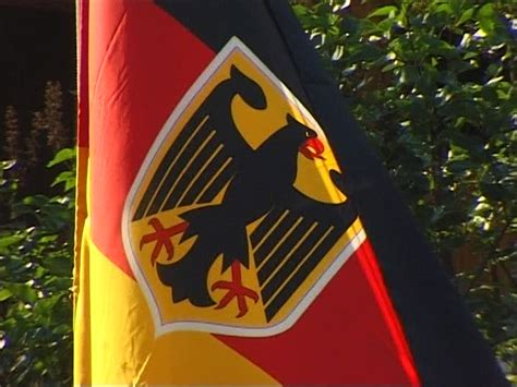 National Flag / Federal Eagle / Germany SD Stock Video