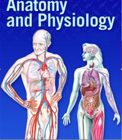 An Introduction to Anatomy and Physiology: Anatomical
